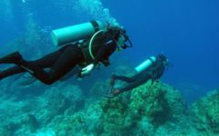 Johnathan Thomson scuba diving over the summer.